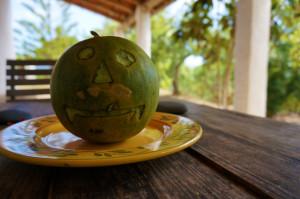 mellow melon session