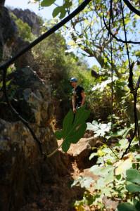 climbing: action & adventure & fun