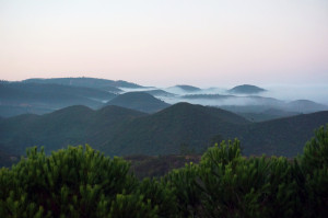 morning mist** plateau